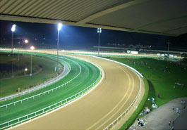 Dubai Horse Racing